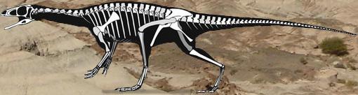 dinosaure de patagonie