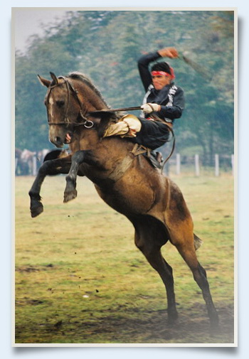 jineteada rodeo gaucho