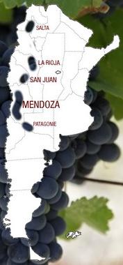 Vin Argentin