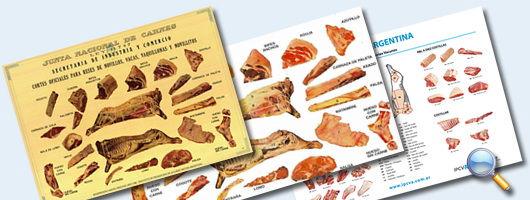 coupes de viande argentine
