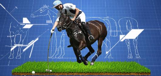 biotechnologie cheval de polo