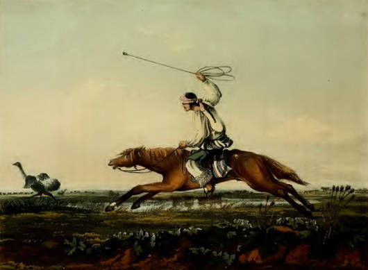 chasse à l'autruche dans la pampa