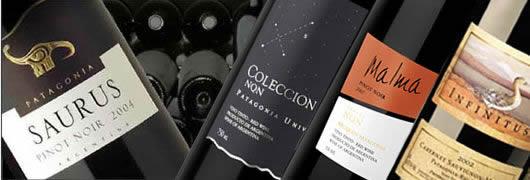 vins patagonie