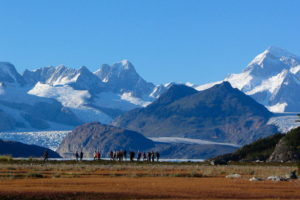 patagonie horn