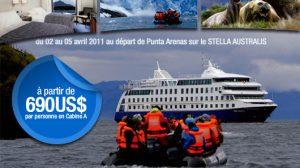 stella australis promotion