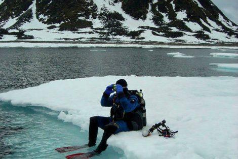 antarctique plongée