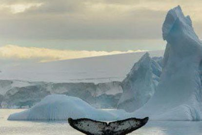 aéro croisière antarctique