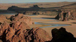 patagonie darwin