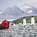 antarctique malouines