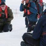 antarctique manchot empereur