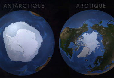 antarctique vs arctique