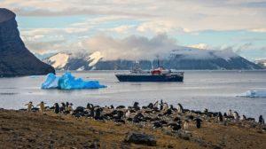 ortelius antarctique